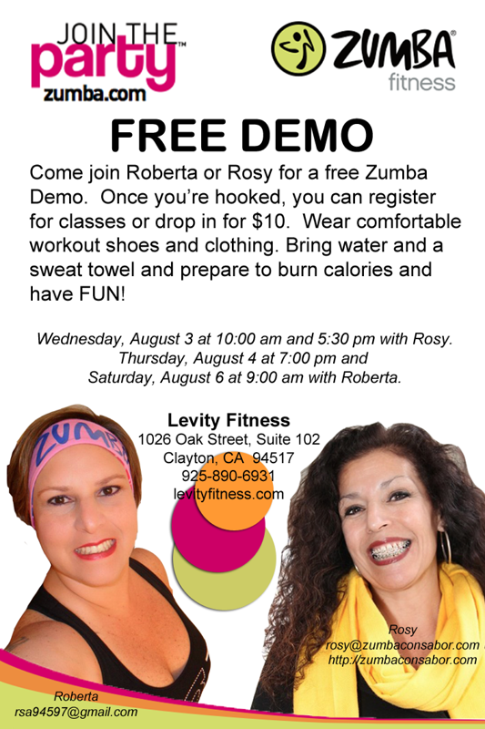 Levity Demo Flyer